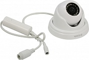 D-Link <DCS-4802E  /UPA/A2A> Full HD Outdoor PoE Mini Dome Camera (LAN, 1920x1080, f=2.8mm, 14LED)